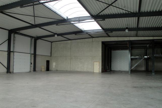 Showroom entrep t louer peripherie de bruxelles aximas - Hangar a louer belgique ...