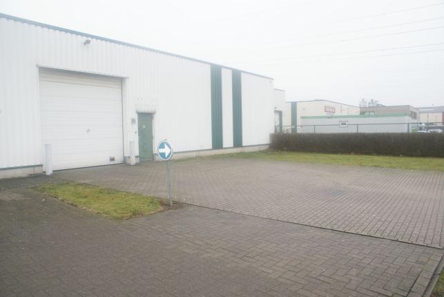 Loods met magazijnruimte te huur in Temse Oost-Vlaanderen