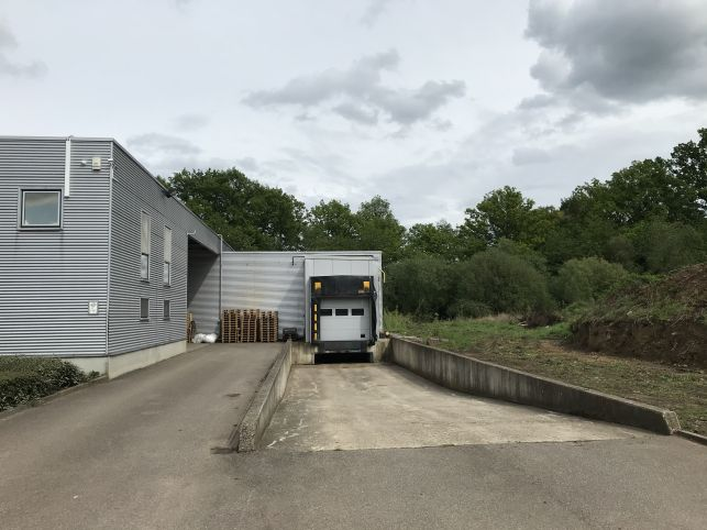 Warehouse with cold storage for rent in Diest