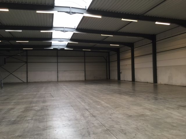 Lammerdries Antwerp | Warehouse to lease